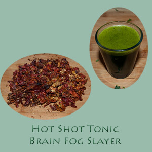 Hot Shot Tonic - Brain Fog Slayer